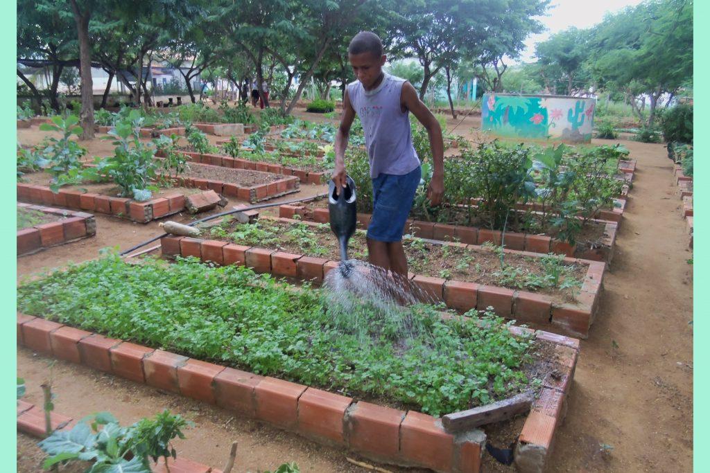orto comunitario ad Utinga per i ragazzi
