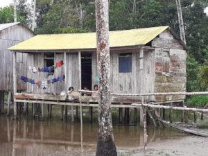 Amazzonia 4